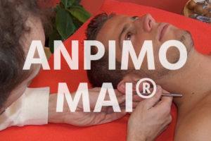 AnPiMoMai: Fünf Kurse – eine Ausbildung